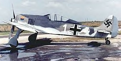 fw-190_photo_jennifer_houston.jpg